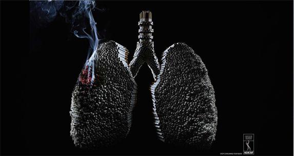 rokok membakar paru-paru